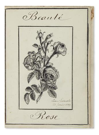 (BOTANICAL.) Latouche, Leonie. Album of botanical drawings.