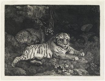 GEORGE STUBBS Two Tygers (or A Tiger and a Sleeping Leopard).