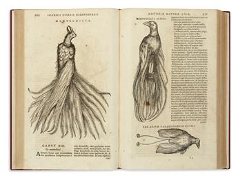 (NATURAL HISTORY.) Nieremberg, Juan Eusebio. Historia naturae, maxime peregrinae, libris XVI distincta.
