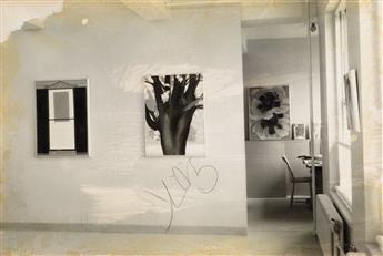 ALFRED STIEGLITZ. America & Alfred Stieglitz: A Collective Portrait.