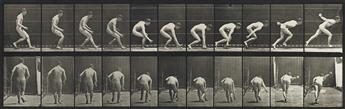EADWEARD MUYBRIDGE (1830-1904) Stooping and lifting water-jar, pl. 225 * Baseball; running and picking up ball, pl. 287.