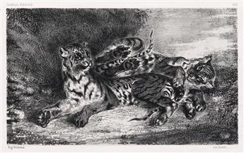 EUGÈNE DELACROIX Jeune Tigre jouant avec sa Mère.
