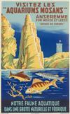 A. DE LOOF (DATES UNKNOWN). VISITEZ LES 'AQUARIUMS MOSANS.' Circa 1938. 39x24 inches, 99x61 cm. Morjos Gand.