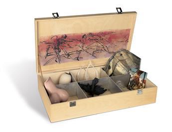 PORTFOLIO ACT UP Art Box.