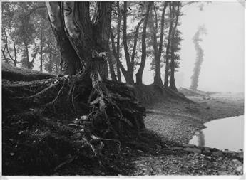 JOSEF SUDEK (1896-1976) A Walk on Troja Island.