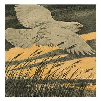 PAUL BRANSOM. The Albino Hawk.