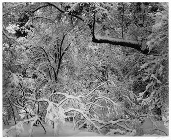 ANSEL ADAMS (1902-1984) Fresh Snow, Yosemite.