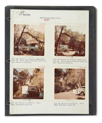 (NATURAL HISTORY.) Collection of photographs documenting tree control in the national parks of the West.