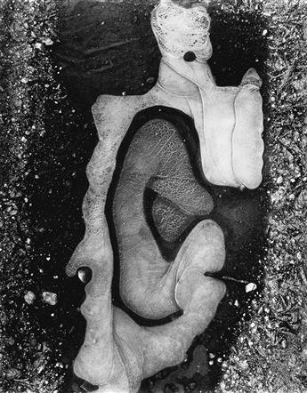 BRETT WESTON (1911-1993) Ice Forms.