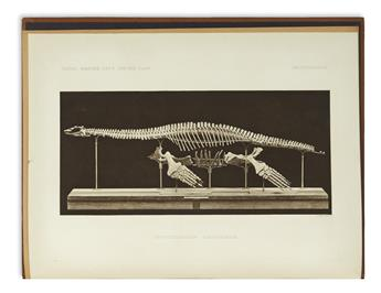 (FOSSILS.) Andrews, Charles William. A Descriptive Catalogue of the Marine Reptiles of the Oxford Clay.