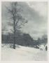 STIEGLITZ, ALFRED (1864-1946) A Winter Sky, Central Park, New York from the portfolio Picturesque Bits of New York.