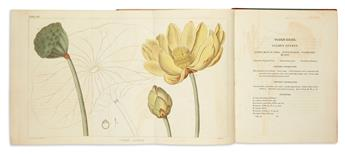 BARTON, WILLAM P.C. A Flora of North America. Illustrated by Coloured Figures, Drawn from Nature.