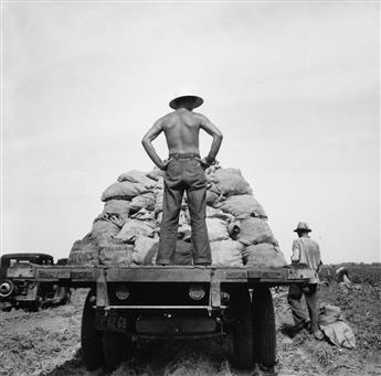 LANGE, DOROTHEA (1895-1965) Potato truck in the field near Shafter, California.